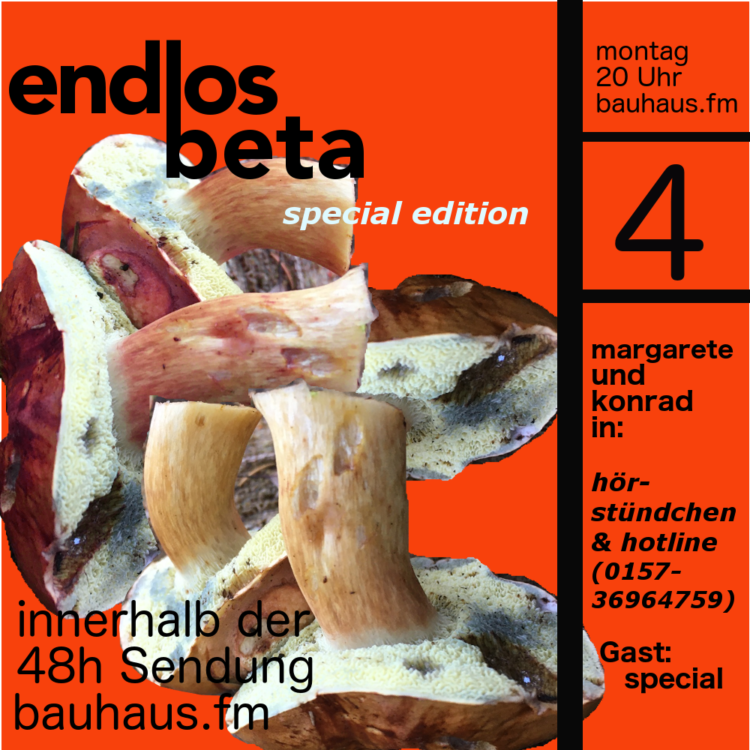 endlos.beta radio 4